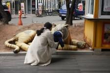 http://kimhongji.com/files/gimgs/th-106_DSC04594.jpg