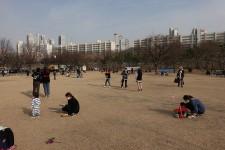 http://kimhongji.com/files/gimgs/th-109_DSC05012.jpg