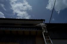 http://kimhongji.com/files/gimgs/th-30_L1003196.jpg