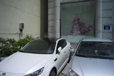 http://kimhongji.com/files/gimgs/th-31_L1004416.jpg