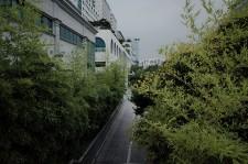 http://kimhongji.com/files/gimgs/th-85_20190713.jpg