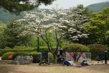 http://kimhongji.com/files/gimgs/th-98_20200504.jpg